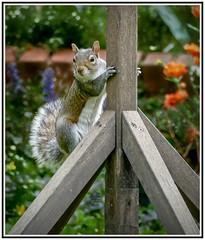 Hello, it's me again. Posing!!
