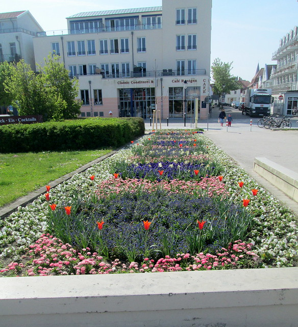planting in Warnemunde, Germany