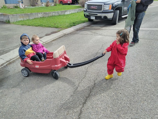Pulling her cousins