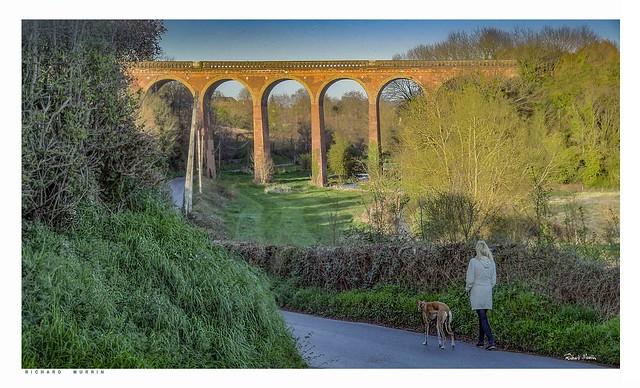 Wife Walking The Dog, Lullingstone Lane, Eynsford, Kent.