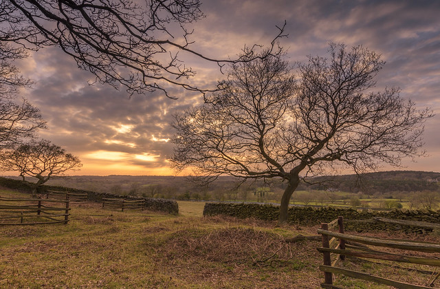 Old John Wood Sunset