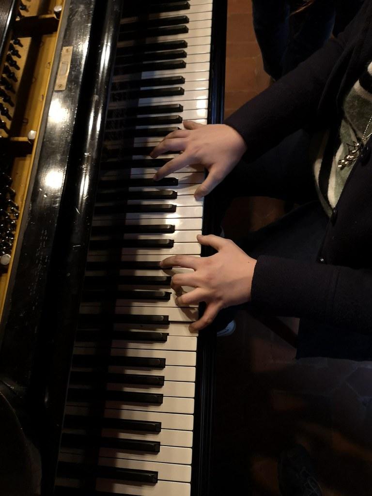Collezione di Strumenti Musicali del Dipartimento di Musicologia e Beni Culturali - Università degli Studi di Pavia