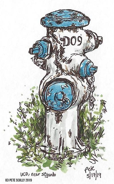 hydrant near segundo, uc davis