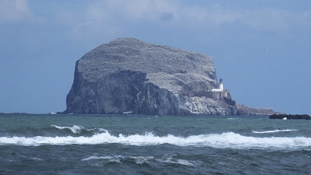 Bass Rock and Rolling Waves