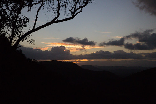 australia queensland sunshinecoast montville flaxton kondililla blackallrange trees silhouette sunset mountains clouds sky