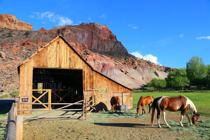 IMG_5207 Pendleton Barn, Capitol Reef National Park