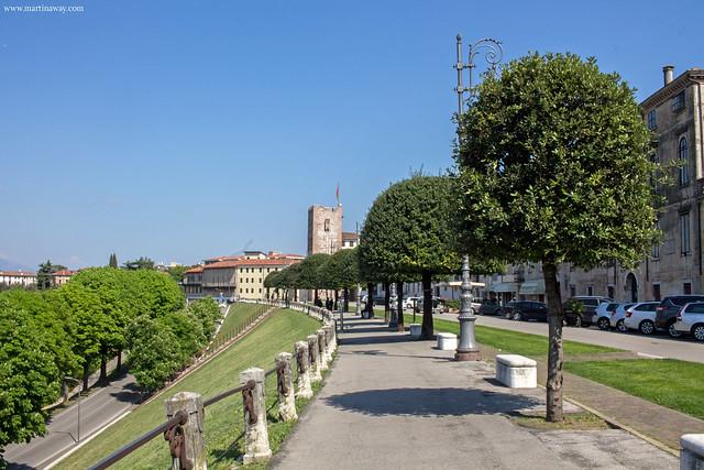Viale dei Martiri, Bassano del Grappa