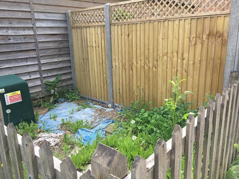 Leftover garden