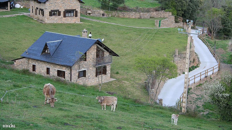 Montardit de Dalt