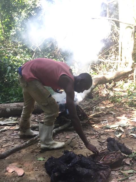 burning bushmeat between bafundo and kakonog