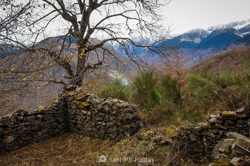 Vall de Toran desde el Bosc de Carlac