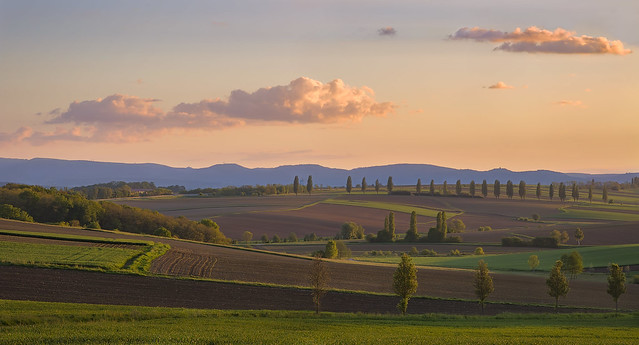Loin de la Toscane - Far away from Tuscany