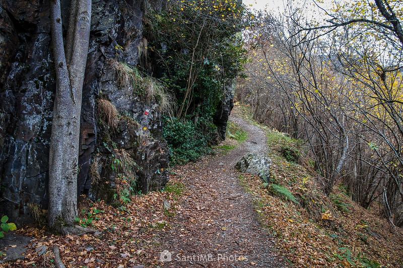 Pared de roca en el Camin de Carlac