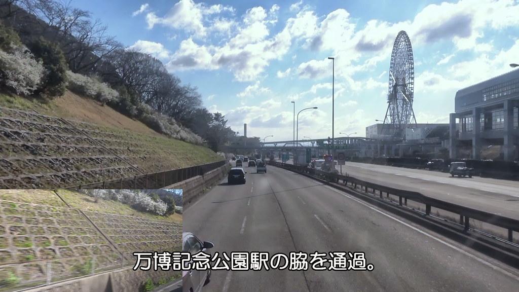 20190324_01_04万博記念公園