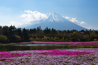 Mt.Fuji | by t.kunikuni