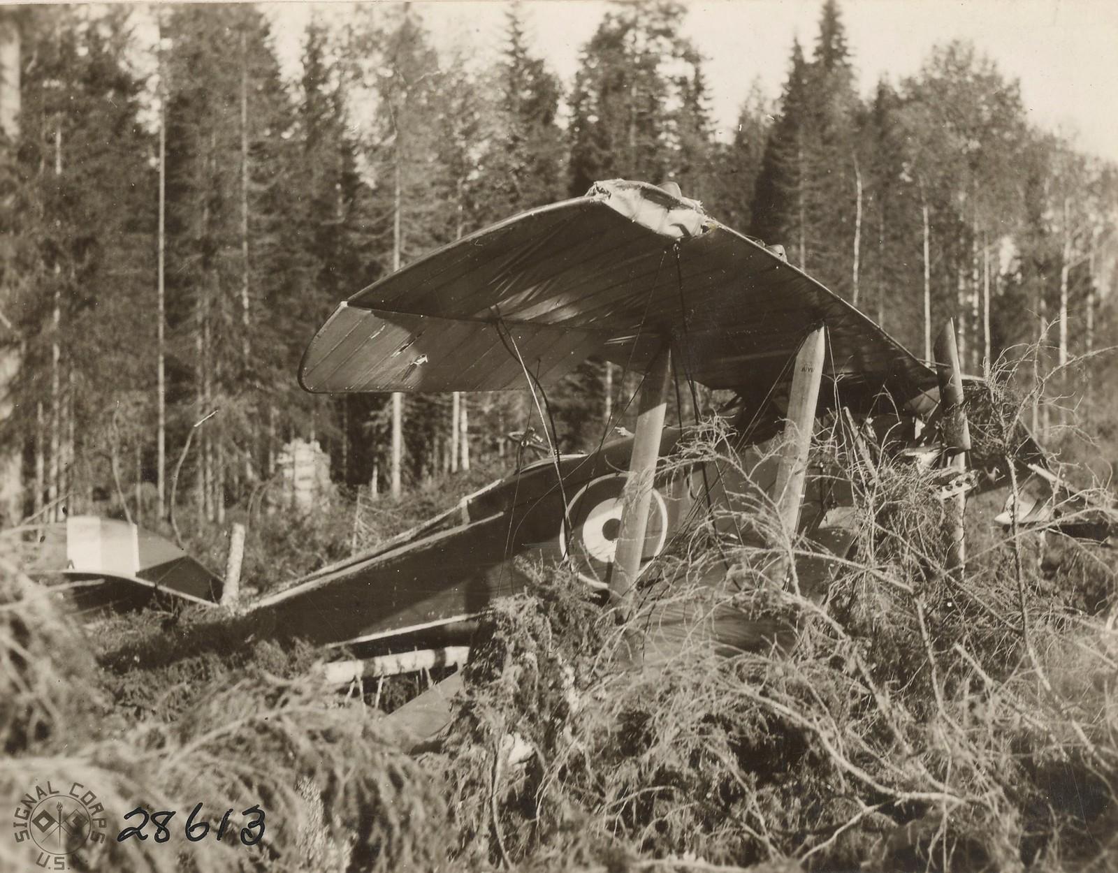Обозерская. Поврежденный британский аэроплан.