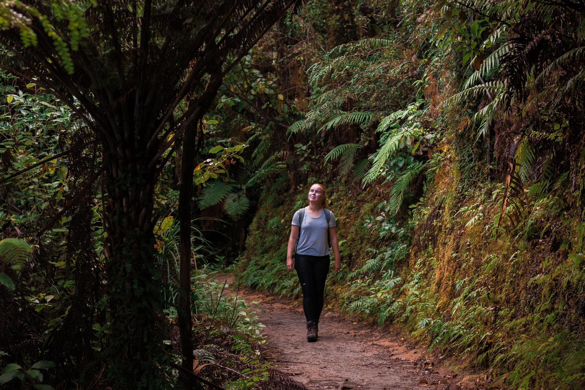 Abel Tasman national park-31