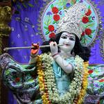 ISKCON Juhu Mangal Deity Darshan on 9th May 2019