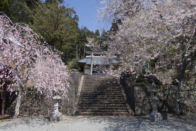murayamasengenjinja_002
