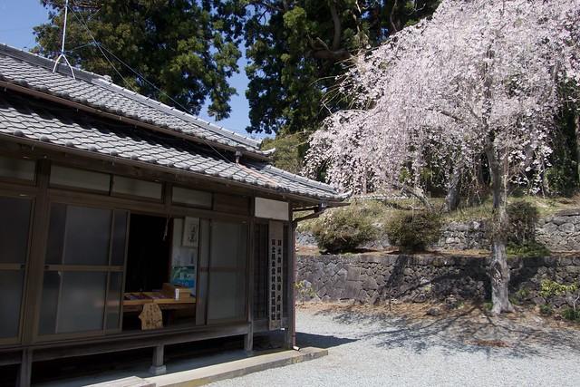 murayamasengenjinja_02