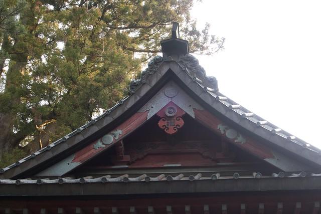 kitaguchihongufujisengenjinja_018