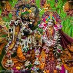 ISKCON Vrindavan Deity Darshan 11 May 2019