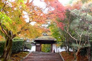 Anraku-ji, Sanmon (Gate) -1 (November 2016)