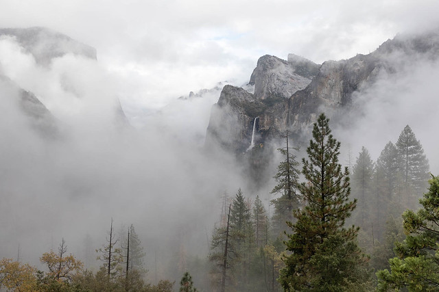 Low Clouds in Yosemite Valley