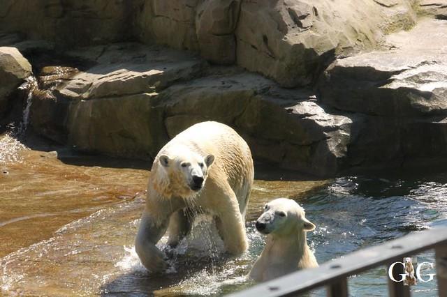 Besuch Zoo Rostock 22.+23.04.201934