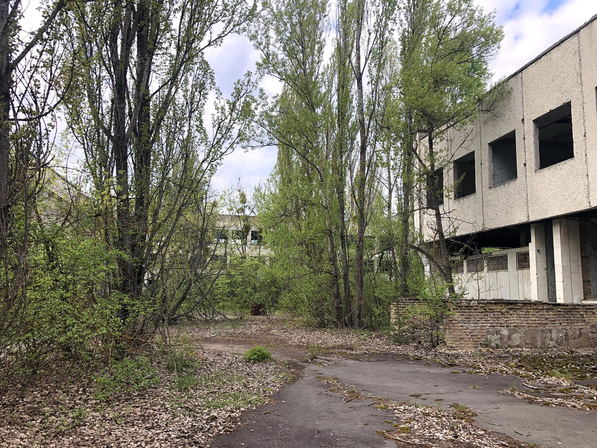 Visitar Chernóbil - Visitar Chernobyl Ucrania Ukraine Pripyat visitar chernóbil - 47045816414 60d6f81ed1 o - Visitar Chernóbil: el lugar más contaminado del planeta
