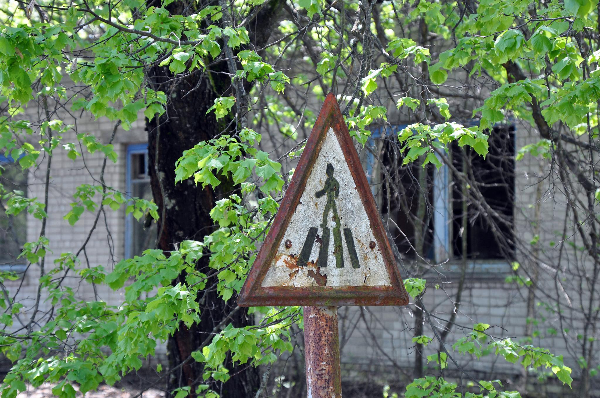Visitar Chernóbil - Visitar Chernobyl Ucrania Ukraine Pripyat visitar chernóbil - 47045823744 d1a04f4c87 o - Visitar Chernóbil: el lugar más contaminado del planeta