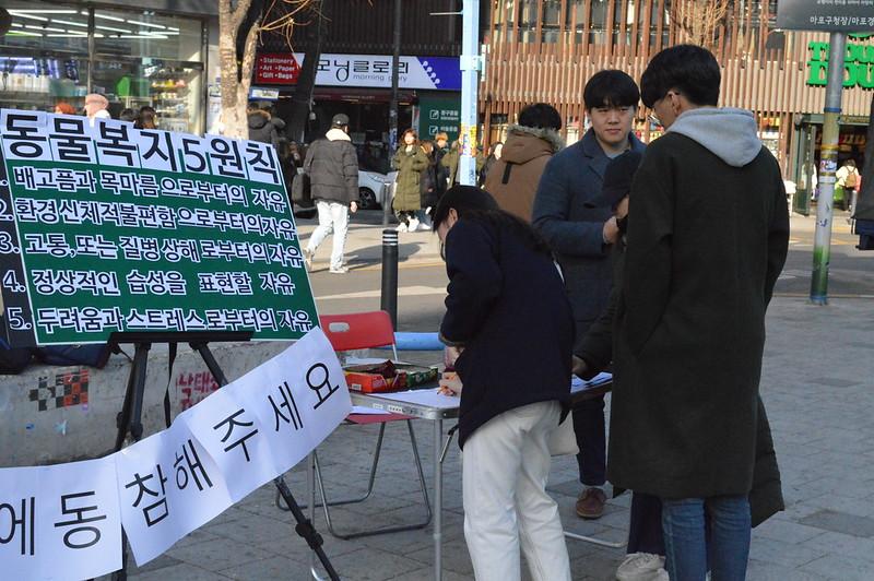 201901_동물카페OUT_23기직접행동 (22)