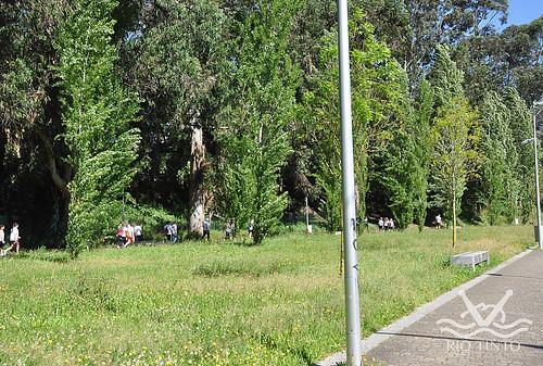 2019_05_12 - Caminhada da LPCC 2019 (84)