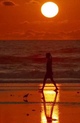 beach florida newsmyrnabeach sun sea red sunrise people walking canon7d canonef70200f4l adobecameraraw flickr barefoot walk bird sammysantiago samuelsantiago fun sky outside may 2019