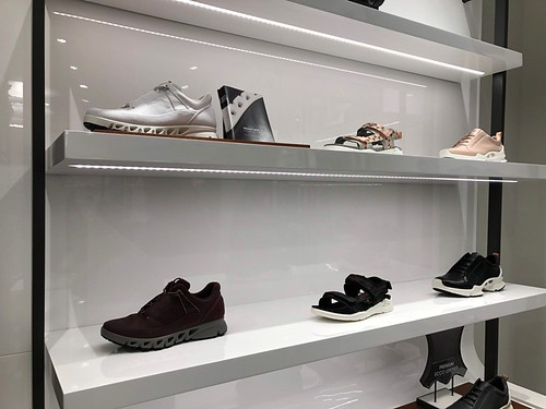 Ecco Elements Prime Store Grand Opening 05
