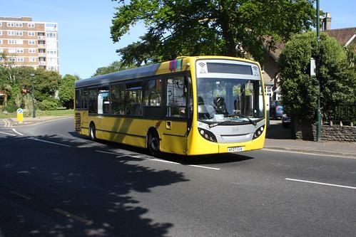 Yellow Buses 517 AY07CUA