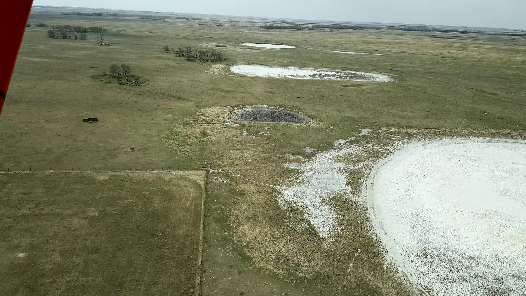 Dry salt flat wetlands near Etters Beach, SK. Photo Credit: Jeff Drahota, USFWS