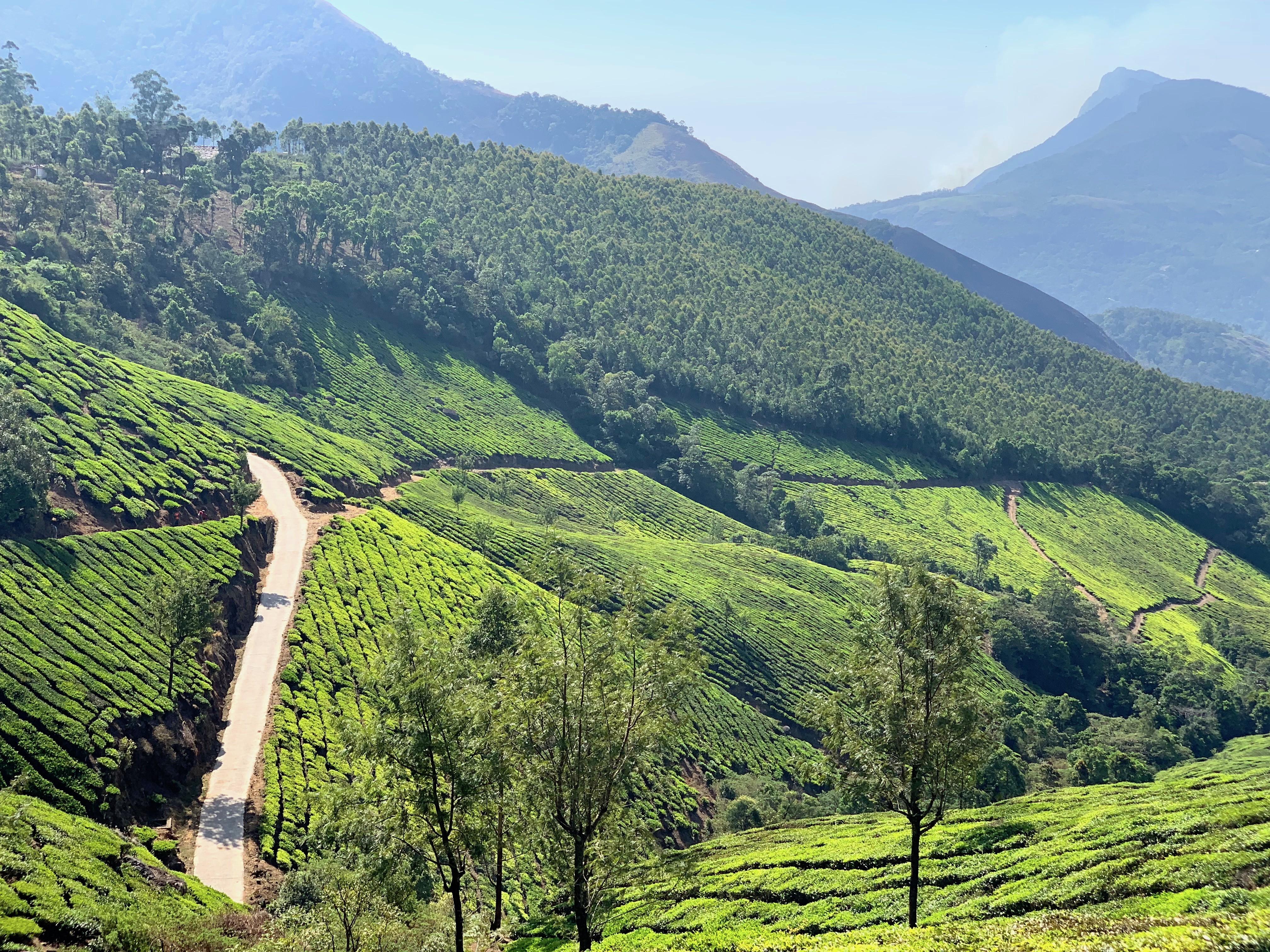 Kerala, India 2019 284