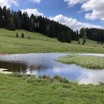 2019-05-15 Etang de la Gruère_Fred (28)