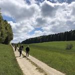 2019-05-15 Etang de la Gruère_Fred (20)