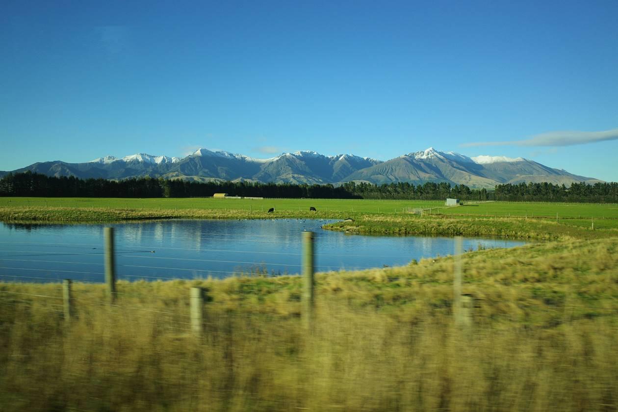 ニュージーランド バスの車窓からの風景