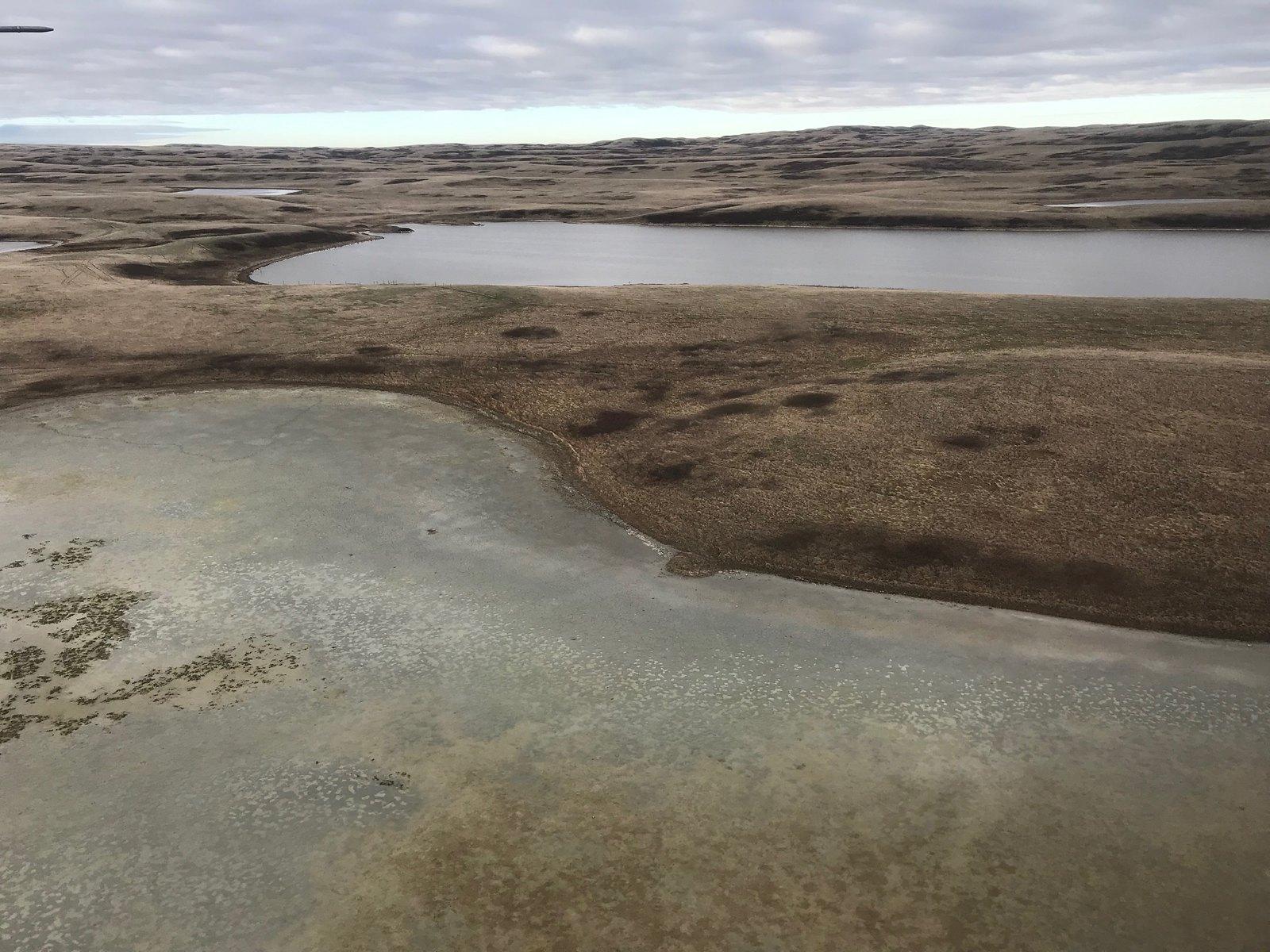 Dry conditions near the Manitoba-Saskatchewan border. Photo Credit: Jeff Drahota, USFWS