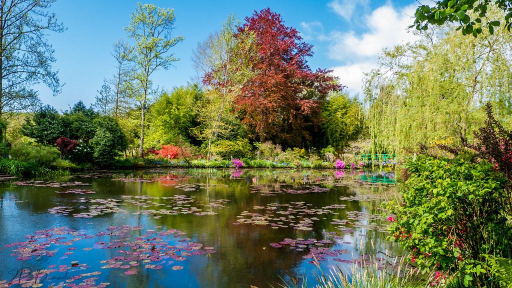 jardins de Monet 47084322164_0aedaf830a_b