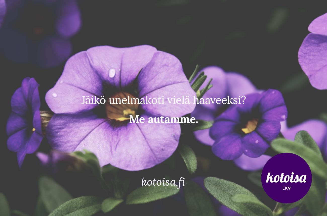 kotoisa_etuovi_kesa_2