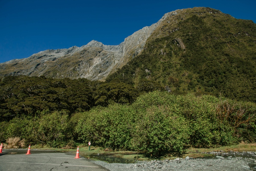 Новая Зеландия: Те-Анау и Фьордленд Новая Зеландия: Те-Анау и Фьордленд 47084959244 56815942a3 o