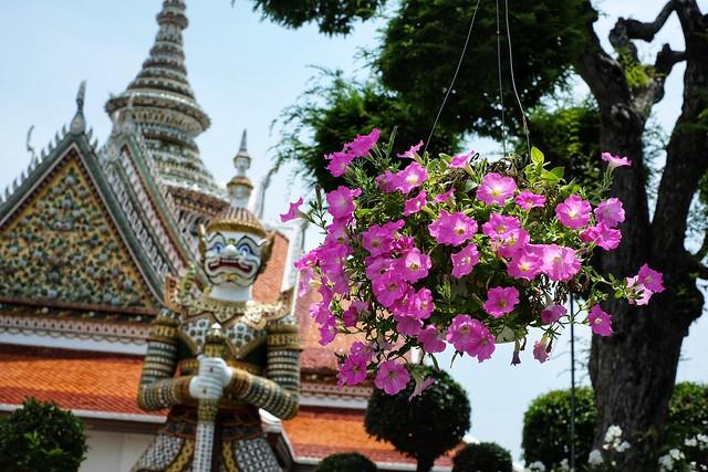 Bangkok, Thailand - Saturday, May 18, 1:12 PM. #Bangkok #Thailand #WatArun #Temple #OrdinationHall #Orchids #バンコク #タイ