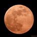 Orange Moon 05-18-2019