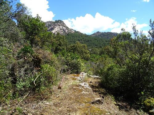 Le 2ème plateau herbeux avec sa vue sur Cinaghja