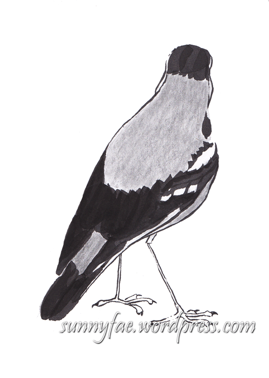 little brown bird in pencil and brush pen
