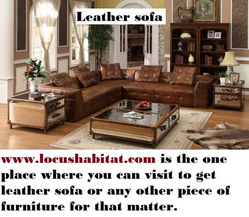 Leather sofa - locushabitat